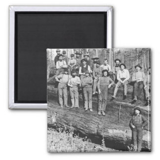 Woodcutters in California, 1891 2 Inch Square Magnet