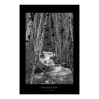 Wooded Creek Poster