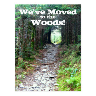 Wooded Forest Trail Address Change Postcard