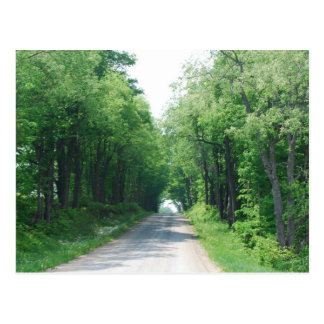 Wooded Lane Postcard