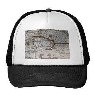 Wooden Bark Trucker Hat