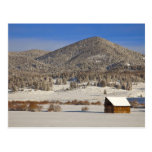 Wooden barn sits in snow near the Boulder Postcard