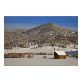Wooden barn sits in snow near the Boulder Poster