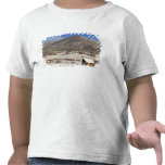 Wooden barn sits in snow near the Boulder Tshirt