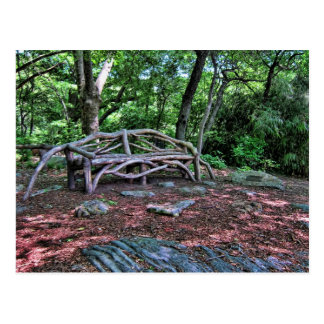 Wooden bench in Central Park, NYC Postcard