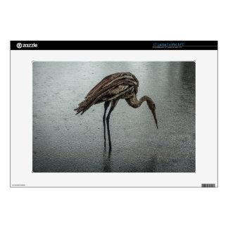 Wooden bird in the rain laptop skins