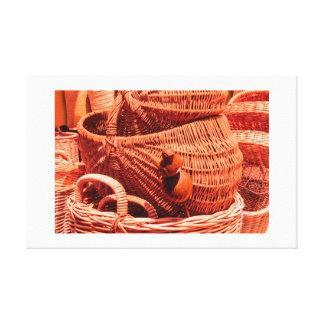 WOODEN BIRDIE TRAPPED IN THE BASKETS - Canvas pri.
