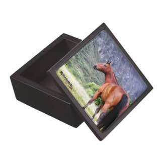 wooden box with horse photo