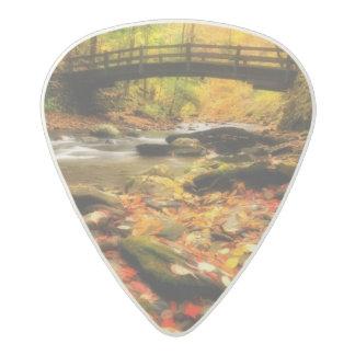Wooden Bridge and Creek in Fall Acetal Guitar Pick