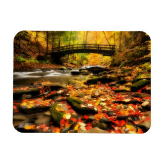 Wooden Bridge and Creek in Fall Magnet