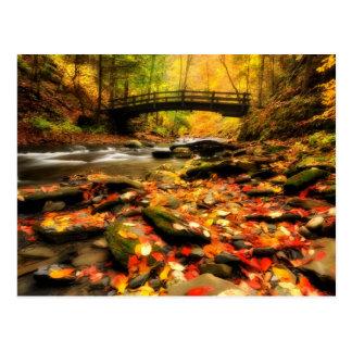 Wooden Bridge and Creek in Fall Postcard