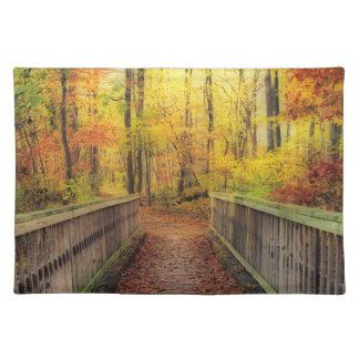 Wooden Bridge Cloth Placemat