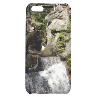 Wooden bridge over the water case for iPhone 5C