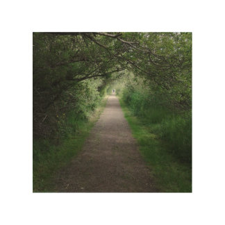 wooden  canvas w/ tree tunnel pic wood wall art