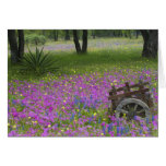 Wooden Cart in field of Phlox, Blue Bonnets Greeting Card