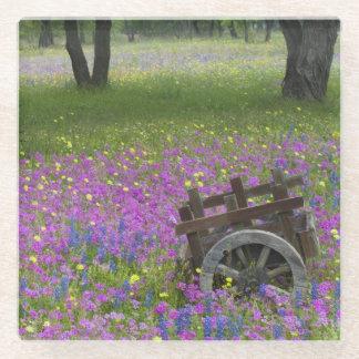 Wooden Cart in field of Phlox, Blue Bonnets Glass Coaster