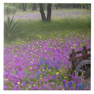 Wooden Cart in field of Phlox, Blue Bonnets with Ceramic Tile