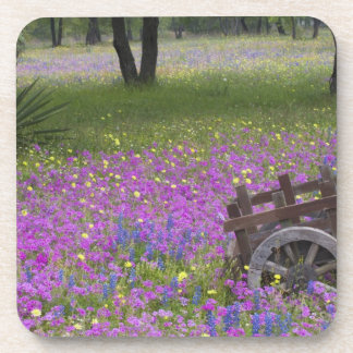 Wooden Cart in field of Phlox, Blue Bonnets with Coaster