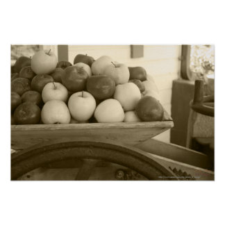 Wooden Cider Press Apples Sepia Photograph Print