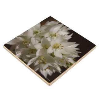 Wooden Coaster - Flowers - Venezuela