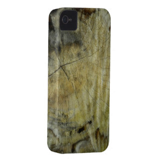 Wooden Cracked Stump iPhone 4 Case-Mate Case