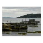 Wooden Docks at Hare Bay, Newfoundland Post Cards