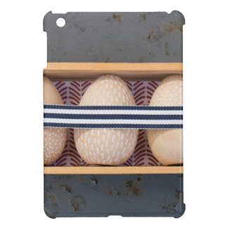 Wooden eggs in a box cover for the iPad mini