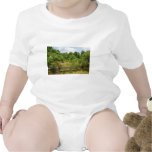 Wooden Fence and Meadow Baby Bodysuit