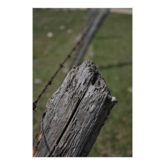 Wooden Fence Post Print