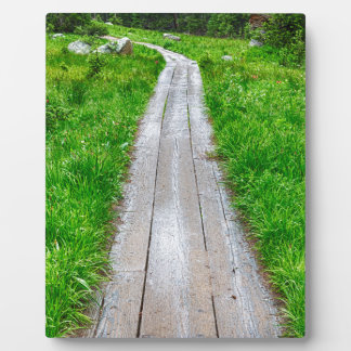 Wooden Forest Path Plaque