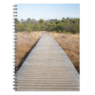 Wooden path in grass and forest winters landscape. notebook