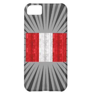 Wooden Peruvian Flag iPhone 5C Case