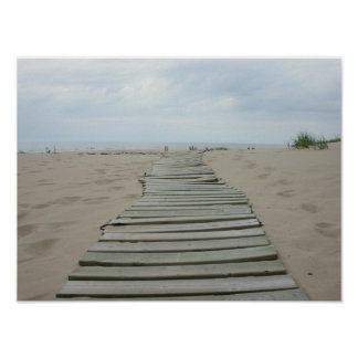 Wooden Plank Path Poster
