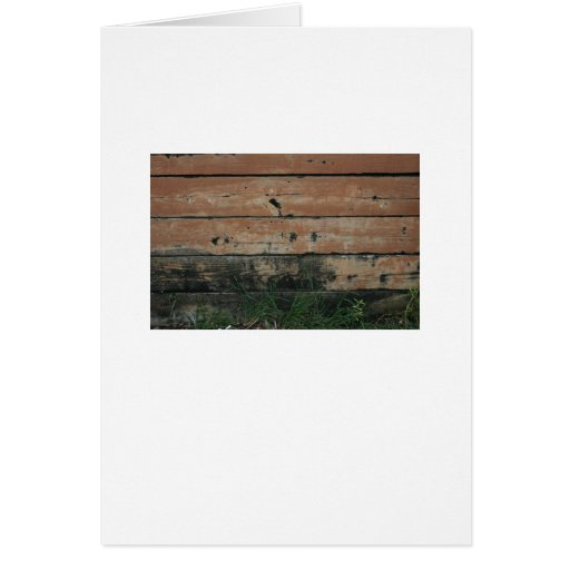 Wooden planks with algae grass  growing photograph greeting card