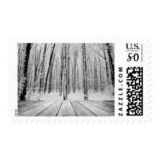 Wooden Porch and Snowy Forest Postage