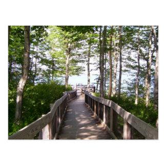 Wooden Railing Postcard