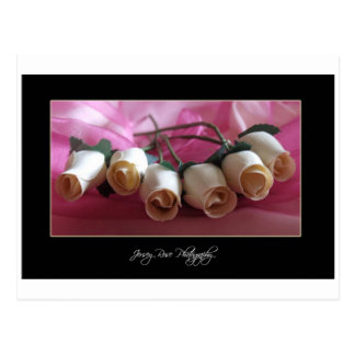 Wooden Roses Postcard