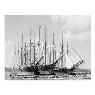 Wooden Sailing Ships, 1905 Postcard
