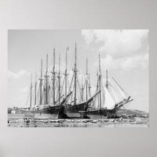Wooden Sailing Ships, 1905 Poster