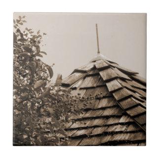 Wooden split shingle cupola sky tree sepia tile