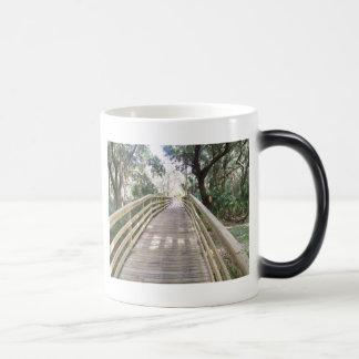 Wooden Walkway Magic Mug