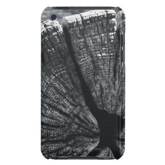 Woodgrain detail iPod Case-Mate case