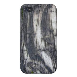 Woodgrain iPhone 4 Case