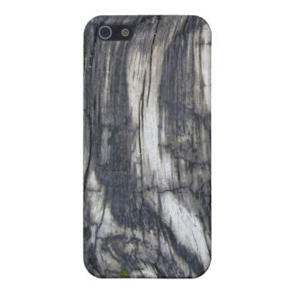 Woodgrain iPhone 5 Covers