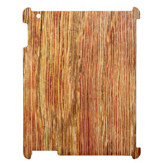 Woodgrain Pattern Image. Cover For The iPad 2 3 4
