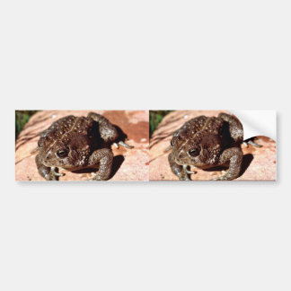 Woodhouse Toad Car Bumper Sticker