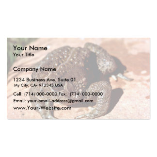 Woodhouse Toad Business Card