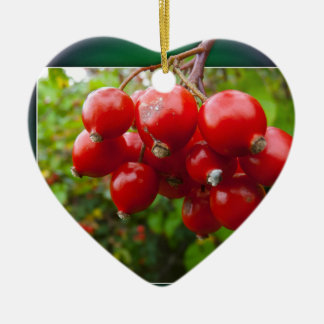 Woodland berries in the frame ceramic ornament