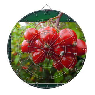 Woodland berries in the frame dartboards