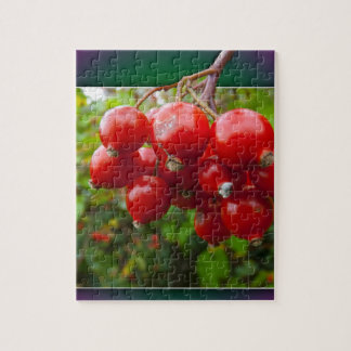 Woodland berries in the frame puzzles